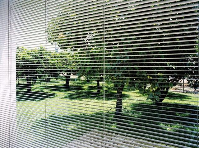 integral-blinds-Morley-Glass-13