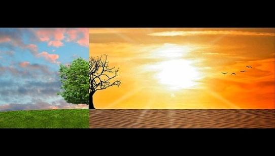 il cambiamento climatico è evidente
