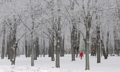 inverno-2016-05-1000x600